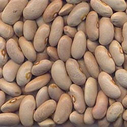 Canela Beans