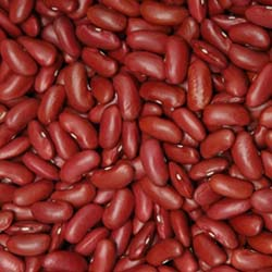 Dark Red Kidney Beans